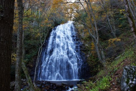10 Virginia waterfalls within driving distance