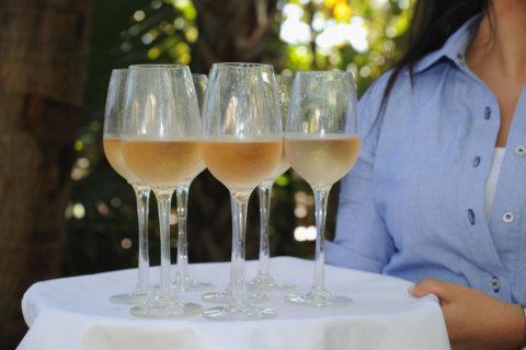 Nats launch frosé, host pop-up rosé garden for June 9 game
