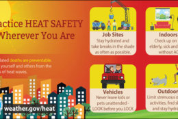 The heat can lead to some dangerous conditions on Monday and Tuesday. Here are some tips from the National Weather Service to keep yourself, your kids and pets safe. (Courtesy National Weather Service)