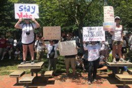 """Scenes from the """"Families Belong Together"""" march and rally. (WTOP/Dick Uliano)"""