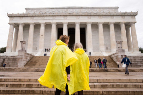 Flash flood watch issued for parts of DC area