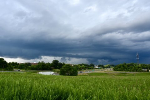 Thunderstorms, flooding dampen DC area