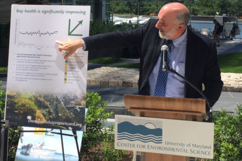 2017 report card for Chesapeake Bay health shows some progress