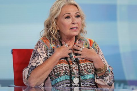 Roseanne Barr on 'mourning' the loss of her sitcom character