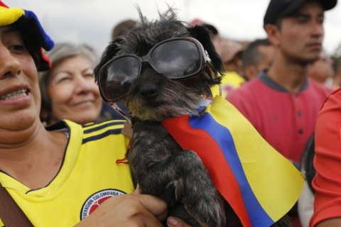 PHOTOS: 2018 FIFA World Cup, part 2