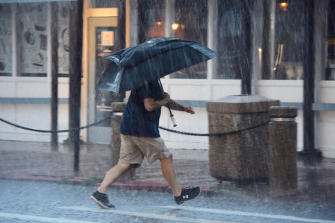 2018 could become one of DC area's 5 wettest years on record