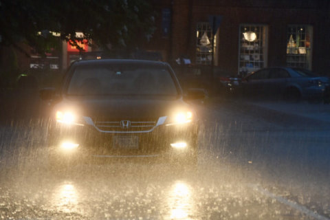 November to remember: This year's was wettest on record in DC