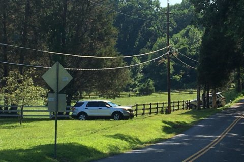 17-year-old driver dies after car speeds off road, hits tree in Fairfax Co.; 2 other teens injured