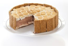 "This undated photo provided by America's Test Kitchen in July 2018 shows a s'mores ice cream cake in Brookline, Mass. This recipe appears in the cookbook ""The Perfect Cake."" (Joe Keller/America's Test Kitchen via AP)"