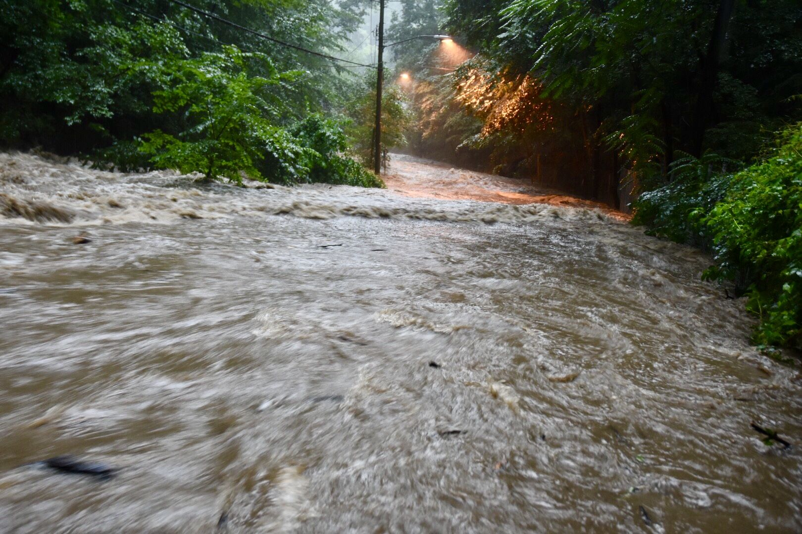 Here's what Broad Branch Road in Rock Creek Park looked like on Wednesday, July 25, 2018. (WTOP/Dave Dildine)