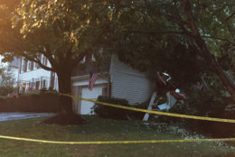 The woman who was killed when the tree fell on her house was the only injury. (WTOP/John Domen)