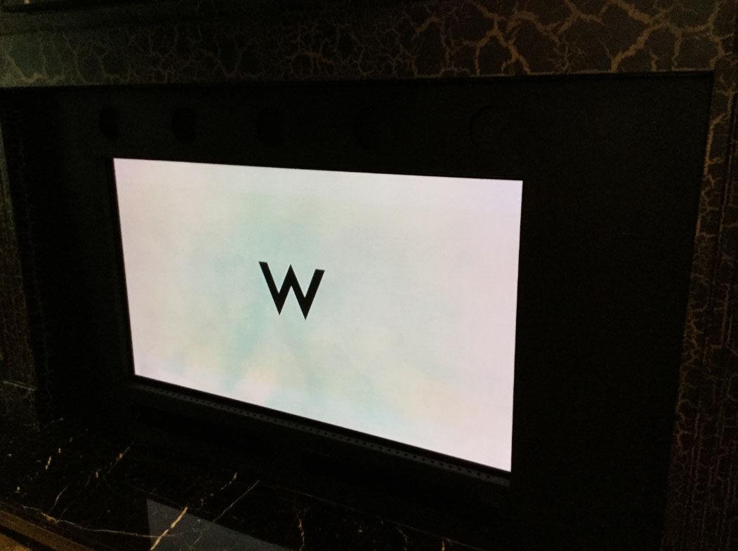 A plasma TV. (Courtesy Rasmus Auctions)