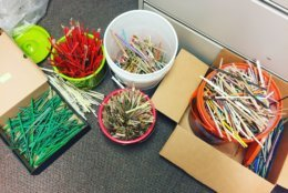 These 4,026 straws were collected at 30 sites in the Anacostia Watershed on Earth Day, April 21, 2018. (Courtesy Anacostia Watershed Society)
