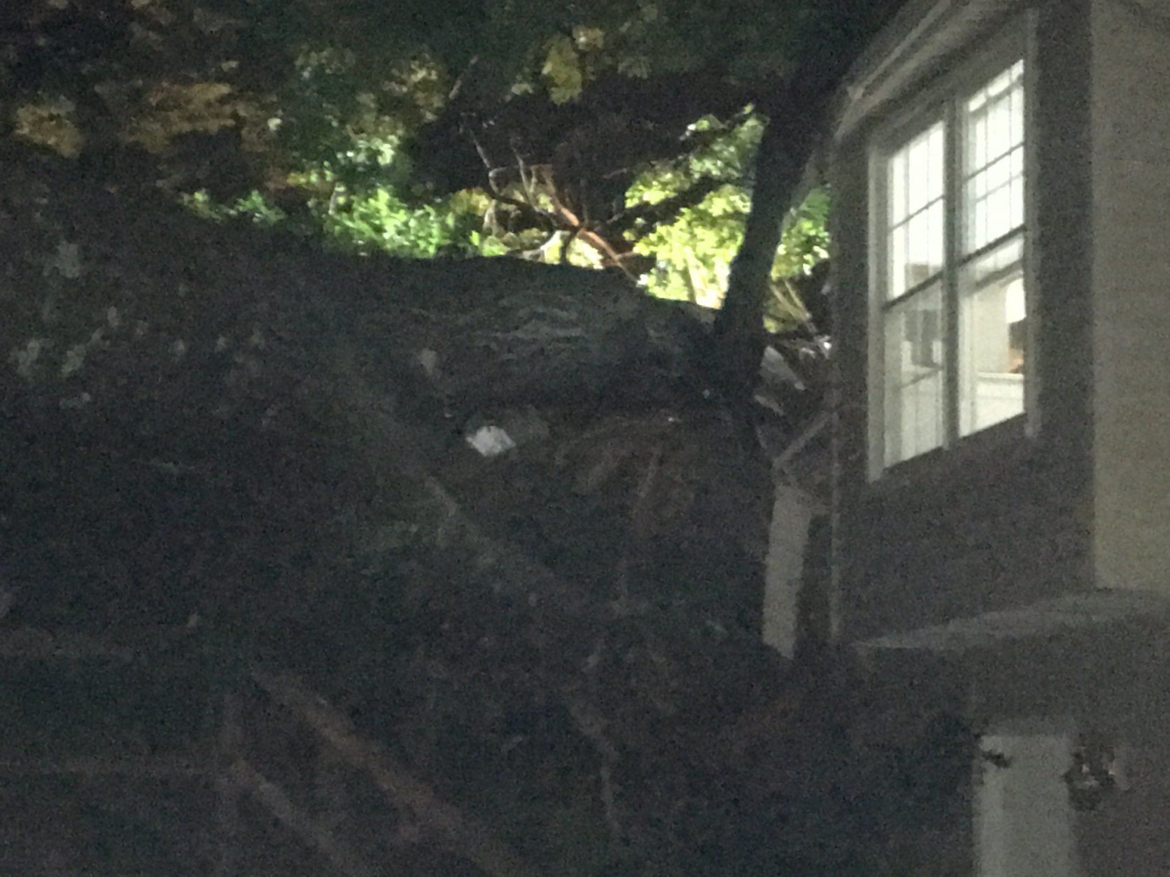 The Fairfax County Fire and Rescue Department arrived at the home in the 5900 block of Burnside Landing Drive around 8:45 p.m. and found a large tree had fallen through.(Courtesy Fairfax County Fire and Rescue Department)