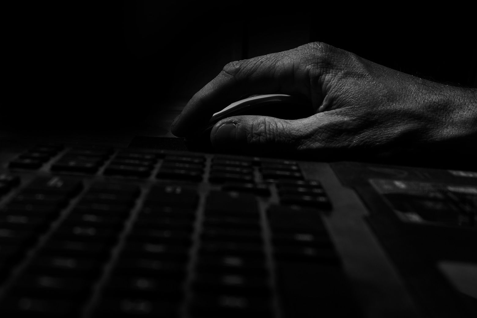 online predator cases