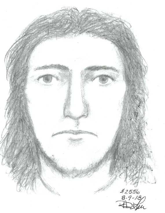 Fairfax Co. police release sketch of suspect who exposed himself to ...