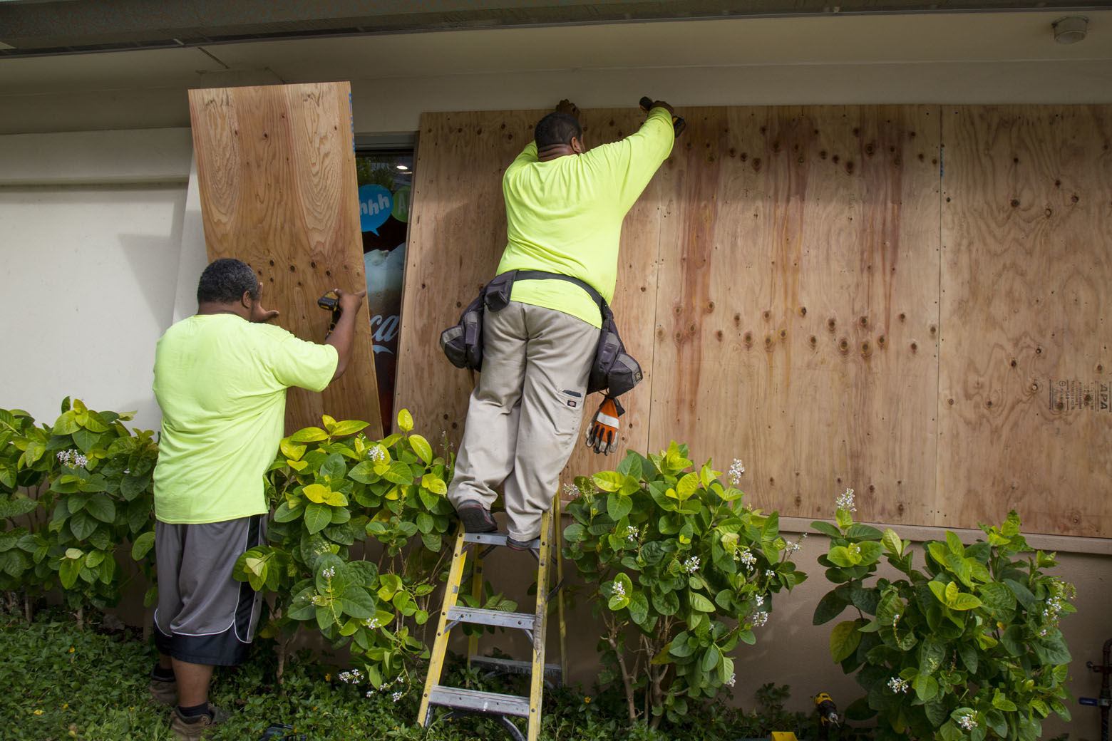 HONOLULU, HI - AUGUST 22:    Yamasaki Construction workers, Talbot Khakai, left, and David Halafihi board up McDonalds multiple plate glass windows in preparation for Hurricane Lane on Kalaukaua Ave on Wednesday, August 22, 2018 in Honolulu, Hawaii. Hurricane Lane is a high-end Category 4 hurricane and remains a threat to the entire island chain. (Photo by Kat Wade/Getty Images)