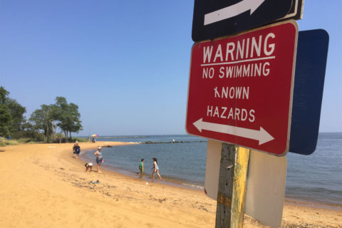 Baltimore girl whose body was pulled from Chesapeake Bay was in 'no swimming' area