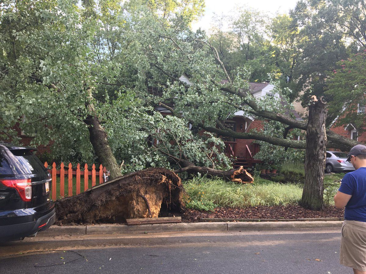 Those residents were not injured, but will receive assistance from the county's emergency management office and the Red Cross, Brady wrote on Twitter. (Courtesy Prince George's County Fire Department)