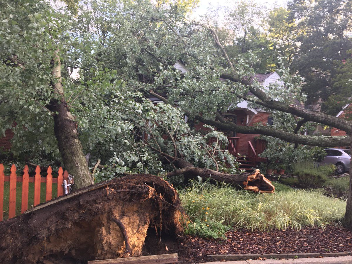 College Park stated that three residents will be moved to temporary shelter after their homes suffered severe damage. (Courtesy Prince George's County Fire Department)
