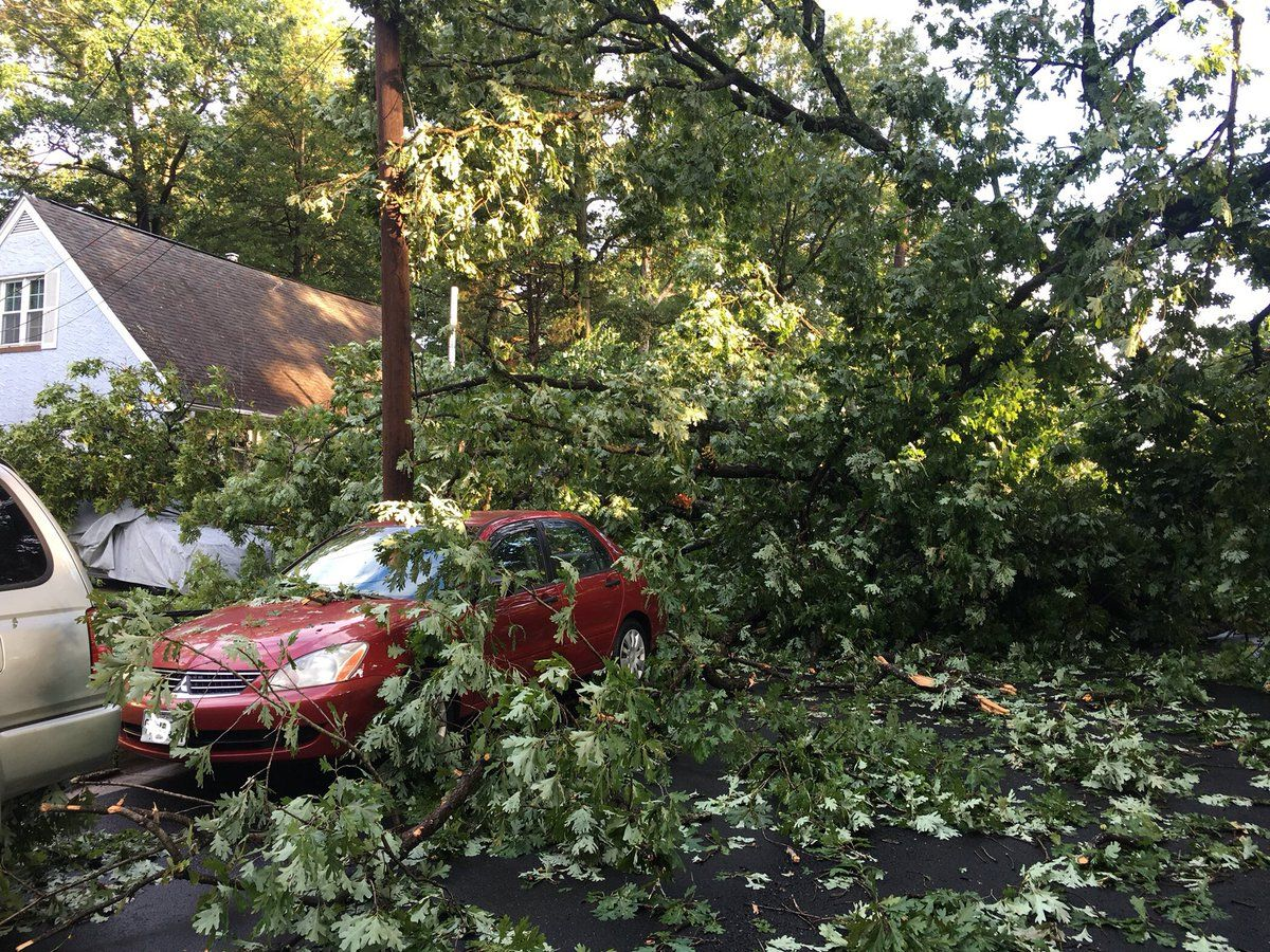 Other parts of College Park that sustained damage included Kenesaw Street, Delaware Street, Edgewood Road and Lackawanna Street. (Courtesy City of College Park)