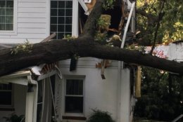 """One College Park resident wrote """"that storm had me shook, trees down, hail … my hands still shaking … no warning, no nothing."""" (Courtesy City of College Park)"""