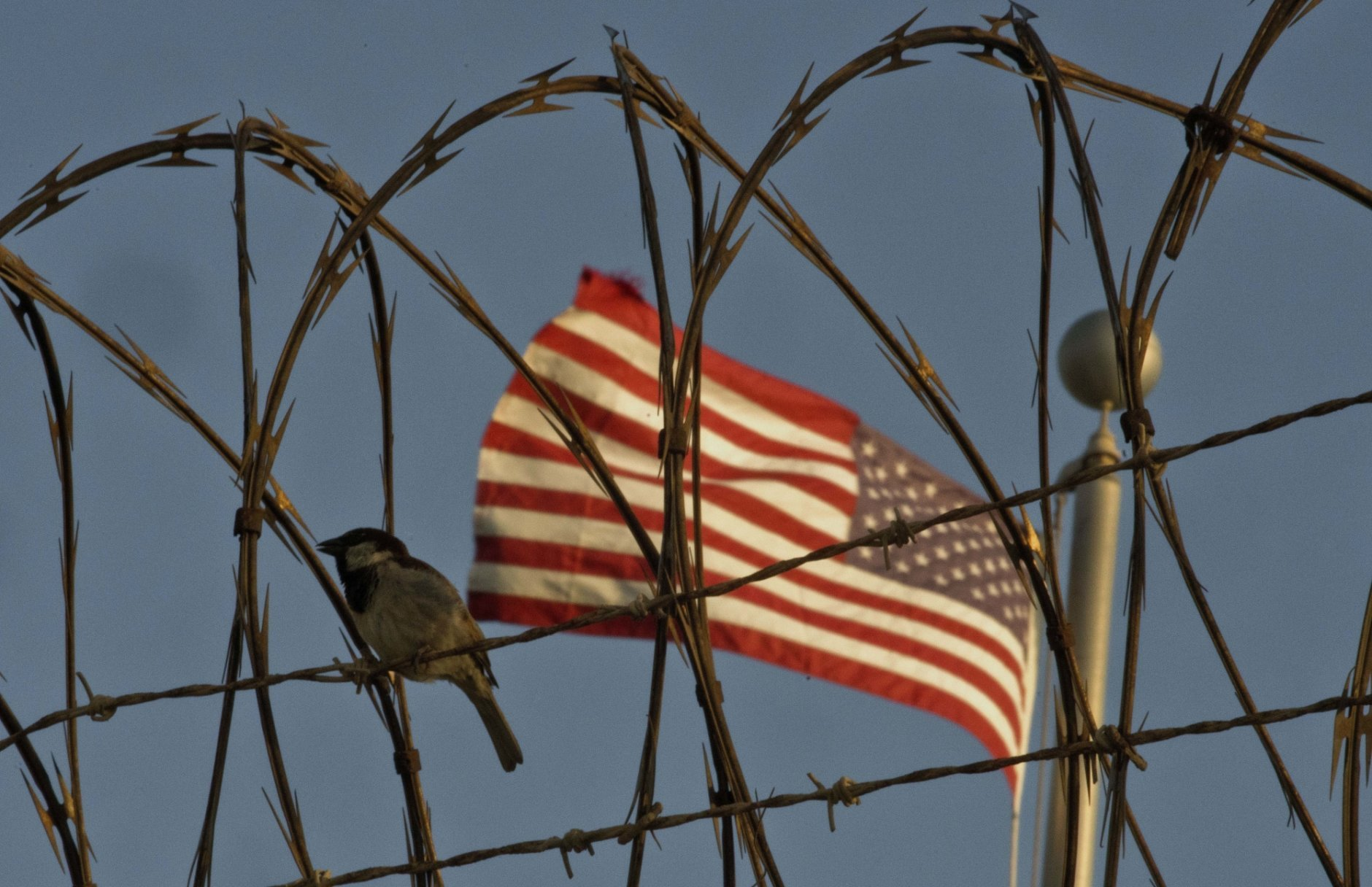 In this June 5, 2018 photo reviewed by U.S. military officials, a bird perches on barbed wire where a U.S. flag flies at the Camp VI detention facility on the Guantanamo Bay U.S. naval base in Cuba. The two Guantanamos have been a contrast since the U.S. opened the base at the southeastern tip of the island in 1903, following the Spanish-American War, and the divide has only grown under Cuba's communist government, which refuses to cash the annual rent checks from Washington as it insists the U.S. leave. (AP Photo/Ramon Espinosa)