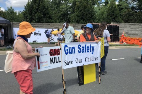 National March on NRA protests gun violence at Fairfax HQ