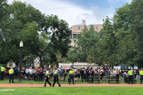 Small group of white nationalists outnumbered by sea of counterprotesters in DC