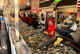 On Friday afternoon, medium crabs were going for $75 a bushel during a summer that has seen that price top $100 several times.  (WTOP/Mike Murillo)