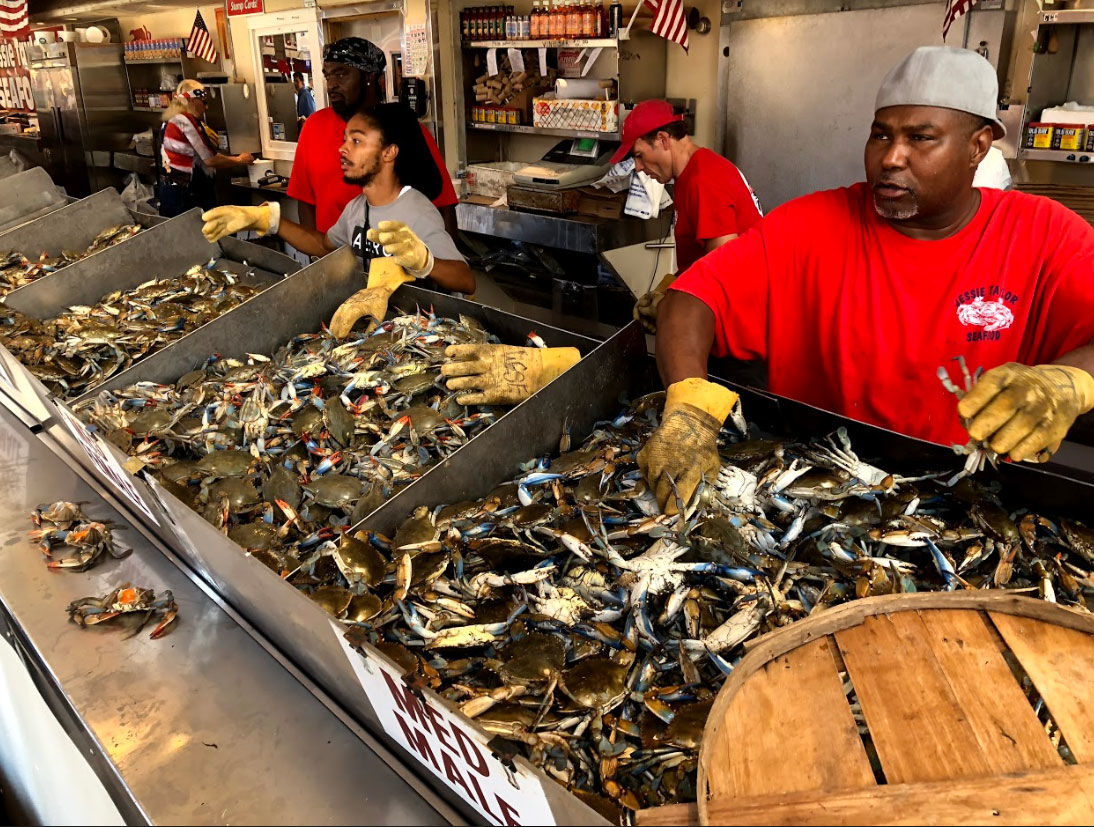 A three-day weekend is a welcomed time for sellers of Maryland blue crabs. (WTOP/Mike Murillo)