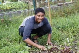 Sidney Brooks IV tends to his garden in Blair Road in Northwest D.C. (WTOP/Kate Ryan)