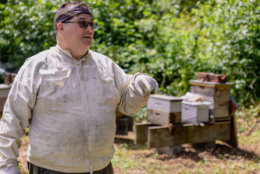John Ferree started working with bees as a boy, but had to re-learn the hobby as an adult. He doesn't mind being stung once in a while. (Courtesy Accor Hotels)