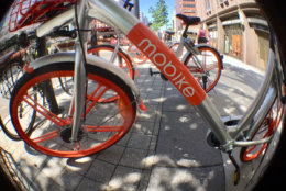 Dockless bike-sharing companies Ofo and Mobike are pulling out of the District. A few Mobikes are seen here on a D.C. street. (WTOP/Kate Ryan)