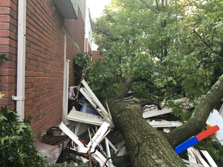 Trees fell in College Park after strong storms blew through Monday evening. (Courtesy Prince George's County Fire Department)