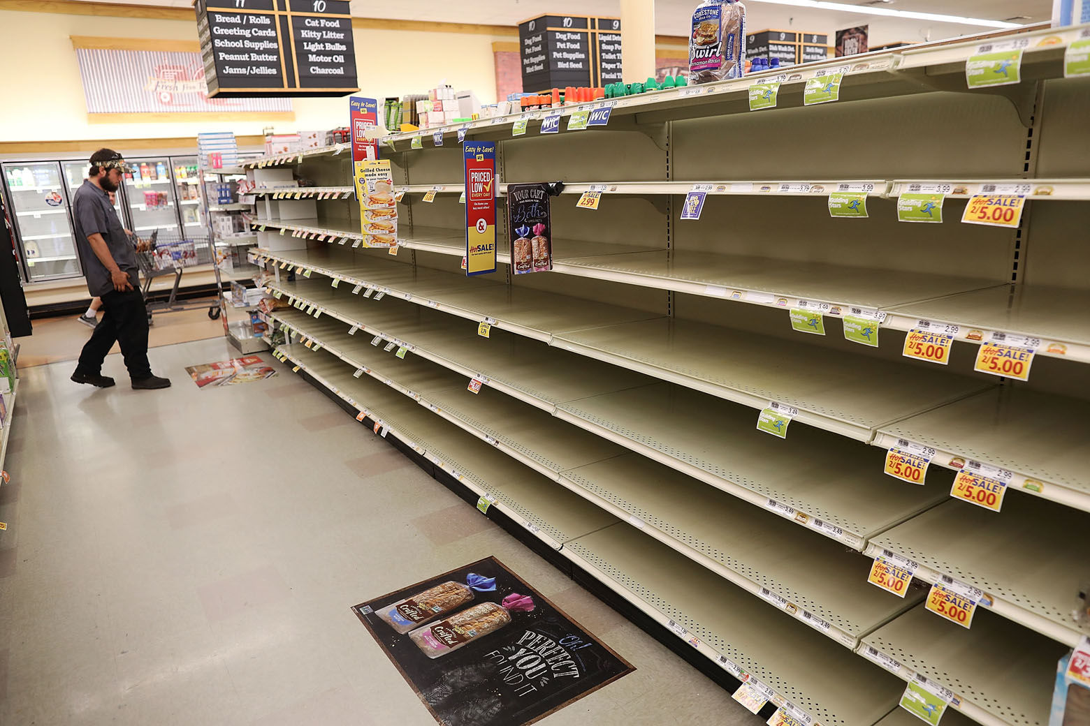 MYRTLE BEACH, SC - SEPTEMBER 11:  A store's bread shelves are bare as people stock up on food ahead of the arrival of Hurricane Florence on September 11, 2018 in Myrtle Beach, South Carolina. Florence, already packing 130 mph winds, is expected to make landfall by late Thursday at near Category 5 strength along the Virginia, North Carolina and South Carolina coastline.  (Photo by Joe Raedle/Getty Images)