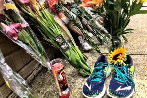 Police ID suspect arrested in stabbing death of DC runner