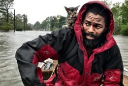 "Robert Simmons Jr. and his kitten ""Survivor"" are rescued from floodwaters after Hurricane Florence dumped several inches of rain in the area overnight, Friday, Sept. 14, 2018 in New Bern, N.C.  (Andrew Carter/The News & Observer via AP)"