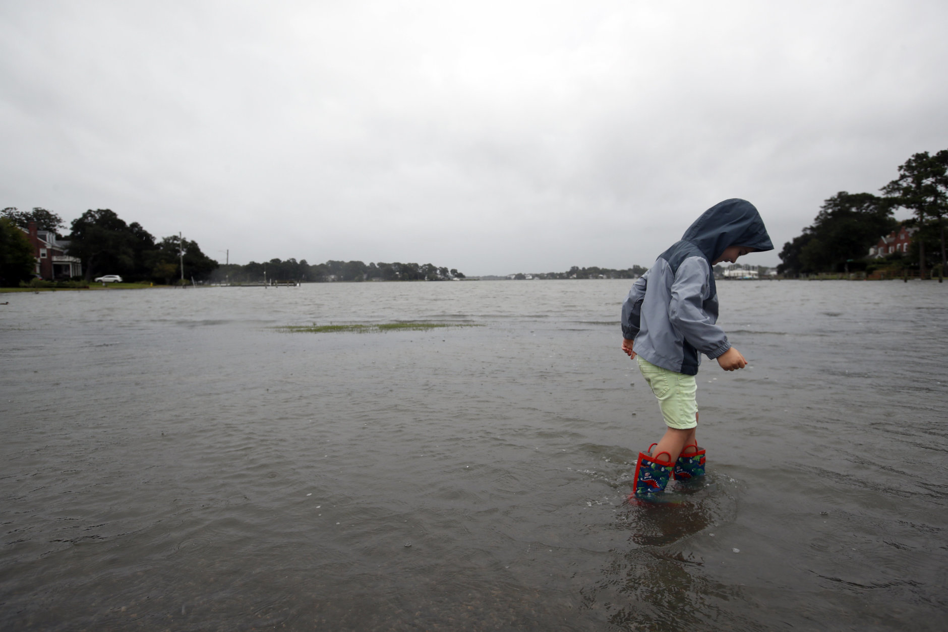 Emmett Marshall, 4, from Norfolk, Va. wades in floodwaters, Friday, Sept. 14, 2018, in the Larchmont area of Norfolk, Va., as the effects of Hurricane Florence are felt. (AP Photo/Alex Brandon)