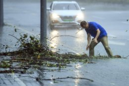 In this photo released by Xinhua News Agency, a man removes debris blocking a drain on a road at Nanshan District in Shenzhen in south China's Guangdong Province, Sunday Sept. 16, 2018. Typhoon Mangkhut barrelled into southern China on Sunday after lashing the northern Philippines with strong winds and heavy rain that left at least 64 people dead and dozens more feared buried in a landslide.(Mao Siqian/Xinhua via AP)