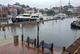 In Annapolis, Maryland, officials are expecting severe tidal flooding to affect Compromise Street and Dock Street during the Monday commute. (Courtesy Annapolis OEM)