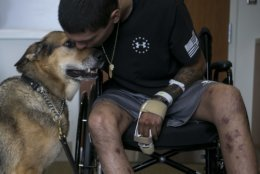 Army Spc. Alec Alcoser leans down to kiss his dog Alex as the pair reunite at Audie L. Murphy Memorial VA Hospital, Friday, Sept. 14, 2018, in San Antonio, Texas. Alcoser was a military dog handler who suffered a traumatic brain injury and his dog lost a leg after they were hit by the blast of a suicide bomber in Afghanistan Aug. 5. Currently, Alcoser is receiving care at the VA's polytrauma unit, while Alex is rehabilitating at Joint Base San Antonio-Lackland. (Josie Norris/The San Antonio Express-News via AP)