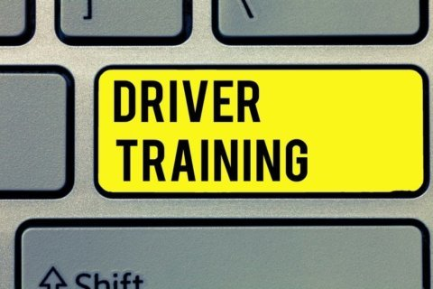 Can you pass a written driver's license test?