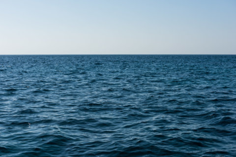 Fishing crew member charged with murder in attack at sea