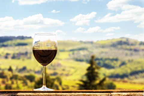 Wine of the Week: Celebrating Chianti Classico wines