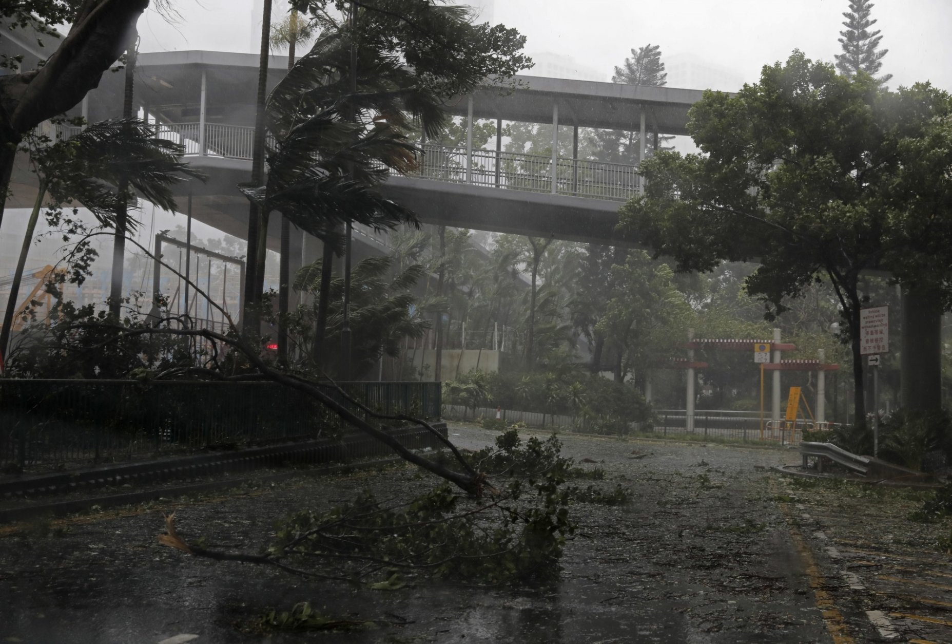 A fallen tree caused by typhoon Mangkhut lies at a street in Hong Kong, Sunday, Sept. 16, 2018. Hong Kong and southern China hunkered down as strong winds and heavy rain from Typhoon Mangkhut lash the densely populated coast. The biggest storm of the year left at least 28 dead from landslides and drownings as it sliced through the northern Philippines. (AP Photo/Vincent Yu)