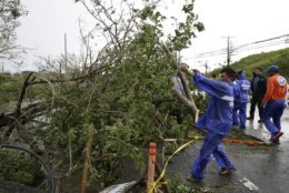 Government workers clean up a tree that was toppled by strong winds from Typhoon Mangkhut as it barreled across Tuguegarao city in Cagayan province, northeastern Philippines on Saturday, Sept. 15, 2018. The typhoon slammed into the Philippines northeastern coast early Saturday, it's ferocious winds and blinding rain ripping off tin roof sheets and knocking out power, and plowed through the agricultural region at the start of the onslaught. (AP Photo/Aaron Favila)