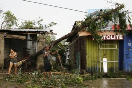 A resident cleans up pieces from a tree that was toppled by strong winds from Typhoon Mangkhut as it barreled across Tuguegarao city in Cagayan province, northeastern Philippines on Saturday, Sept. 15, 2018. The typhoon slammed into the Philippines northeastern coast early Saturday, it's ferocious winds and blinding rain ripping off tin roof sheets and knocking out power, and plowed through the agricultural region at the start of the onslaught. (AP Photo/Aaron Favila)