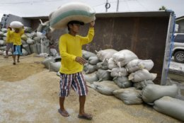 Workers transfer sacks of grain from a toppled truck from strong typhoon winds in Cagayan province, northeastern Philippines on Sunday, Sept. 16, 2018. Driver Alvin Buelta said his truck fell after he failed to see the road repairs due to the high floods caused by Typhoon Mangkhut on Friday night. The typhoon roared toward densely populated Hong Kong and southern China on Sunday after ravaging across the northern Philippines with ferocious winds and heavy rain causing landslides and collapsed houses. (AP Photo/Aaron Favila)