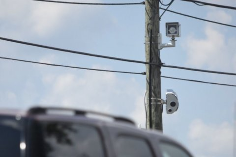 Look out texters: Official wants distracted driving cameras